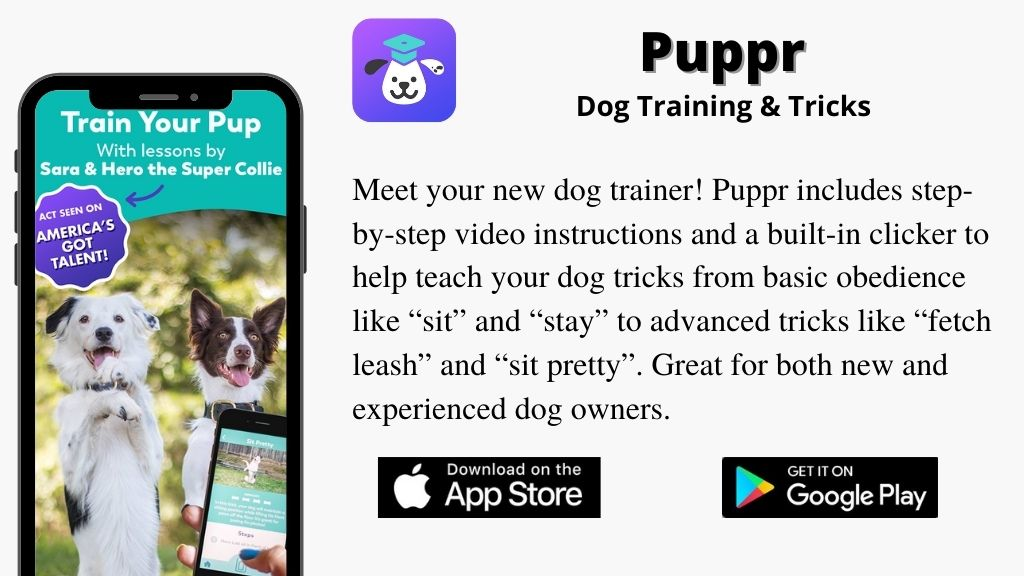 Puppr App: Best Dog Training and Tricks